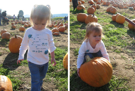 Pumpkinpatch8