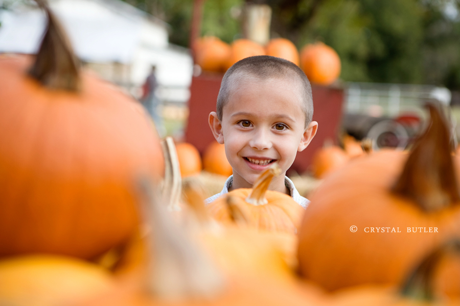 for the love of pumpkins (Rocky Mount, NC, child photographer)