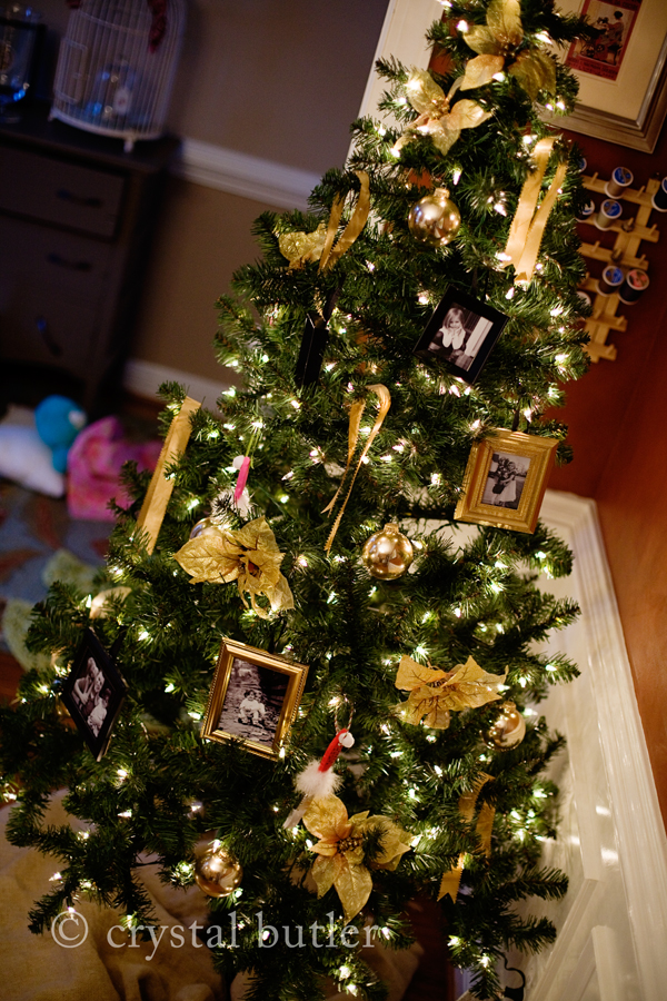 DIY: photo-themed Christmas tree (Rocky Mount, NC, crafty photographer)