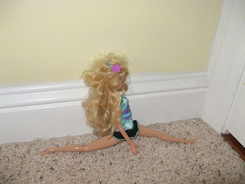 evyn's work: the barbie series