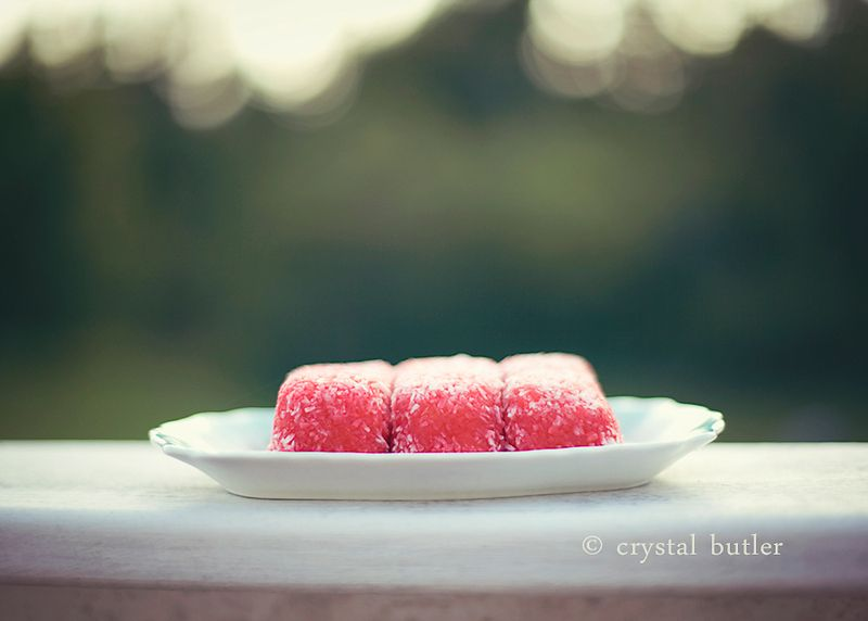an open letter to my dear food-photog Andrea: